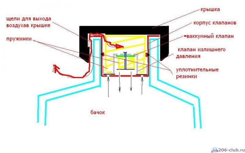 gallery_14709_892_28906.jpg